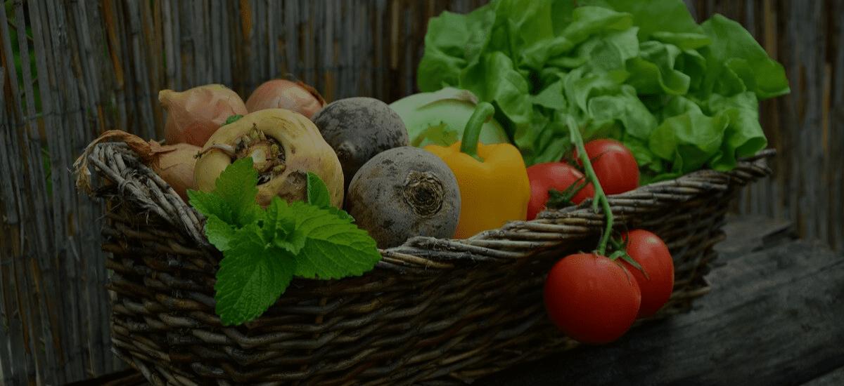 Soups, Light Meals & Snacks